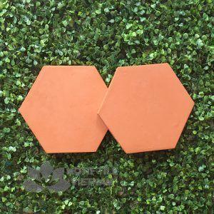 Gạch terracotta đất nung 04 lục giác 20x23 cm