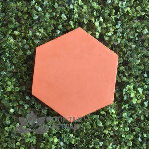 Gạch terracotta đất nung 04 lục giác 20×23 cm
